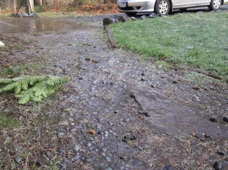What looks like wet ground is actually a slippery, frozen sheet of ice.
