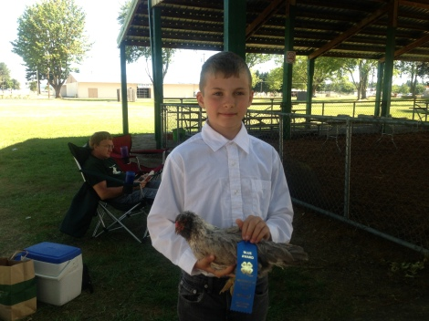 Blue ribbon in chicken showmanship